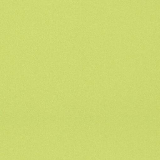 fabrics online nz zing lime