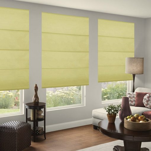 roman blinds nz zing moss
