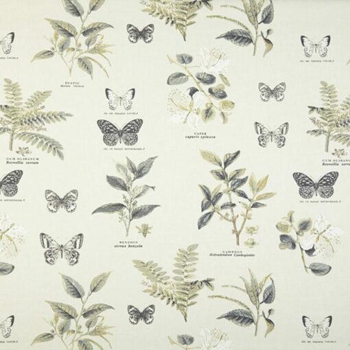 fabrics online nz darwin oyster gray